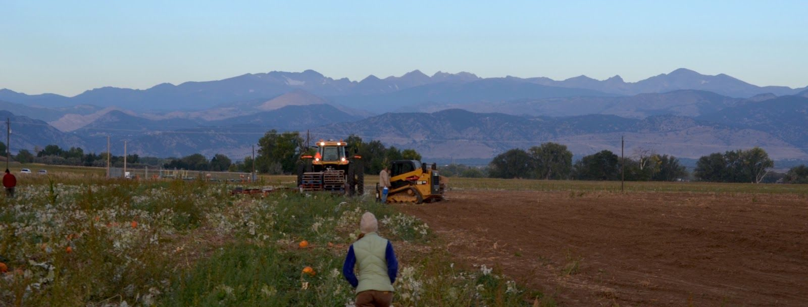 Mobile farm worker walks toward mountains on Colorado farm